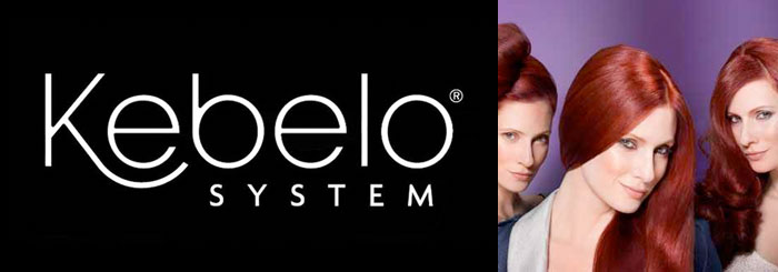 Kebelo system